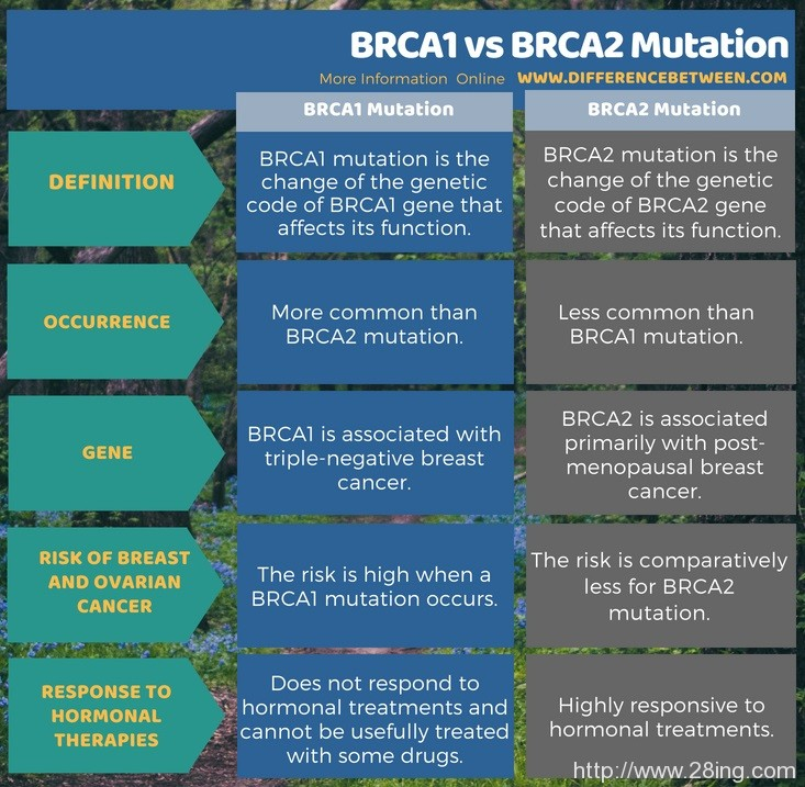 Difference Between BRCA1 and BRCA2 Mutation l BRCA1 vs BRCA2 Mutation