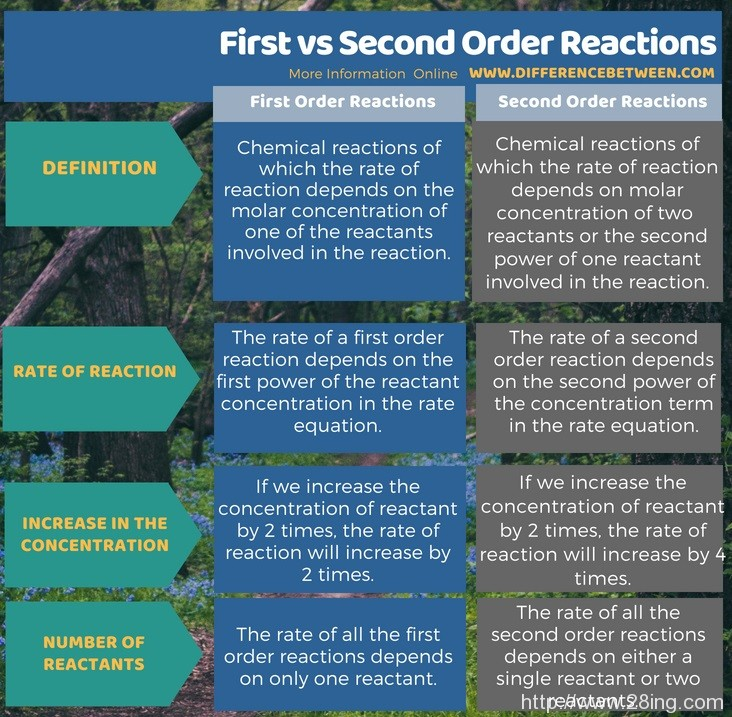 Difference Between First and Second Order Reactions l First vs Second Order Reactions