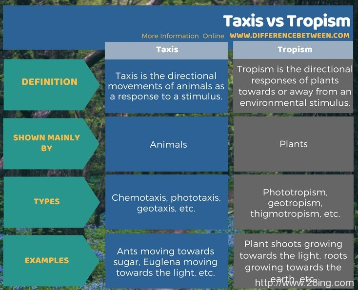 Difference-Between-Taxis-and-Tropism-l-Taxis-vs-Tropism1