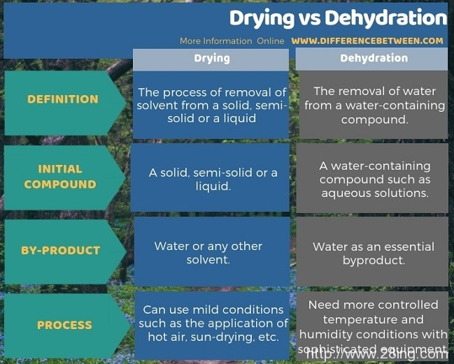 Difference Between Drying and Dehydration l Drying vs Dehydration