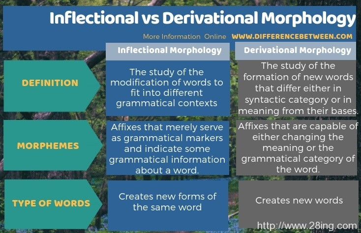 Difference Between Inflectional and Derivational Morphology l Inflectional vs Derivational Morphology
