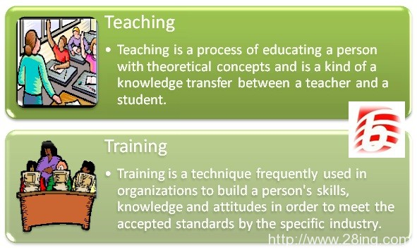 Difference Between Teaching and Training | Teaching vs Training
