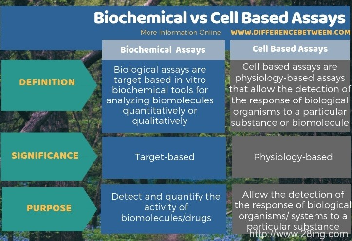 Difference Between Biochemical and Cell Based Assays | Biochemical vs Cell Based Assays