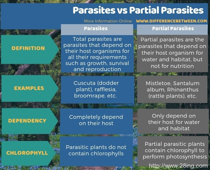 Difference Between Parasites and Partial Parasites | Parasites vs Partial Parasites